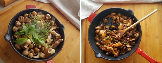 Ruskista puhdistetut sienet kuumalla pannulla oliiviöljyssä